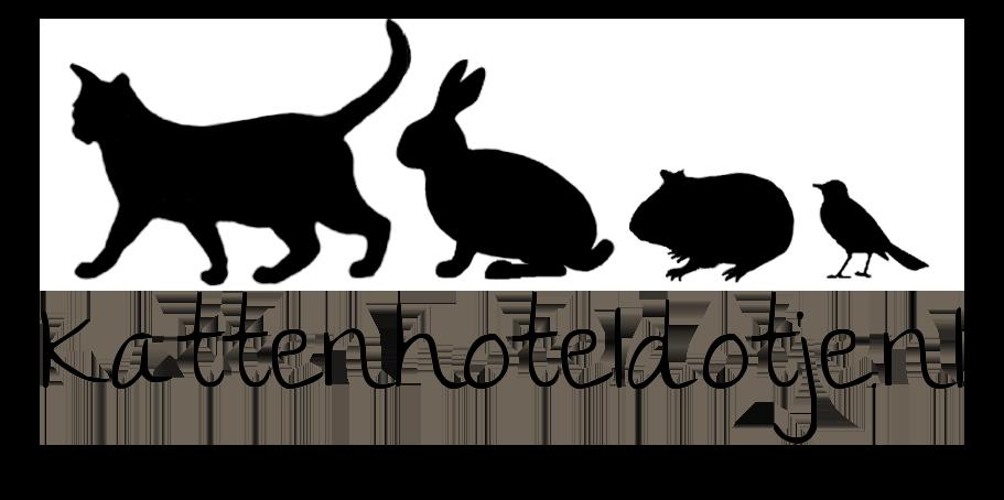Kattenhoteldotje.nl, het beste kattenpension van nederland!
